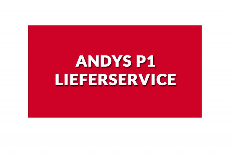 Andys P1 Lieferservice